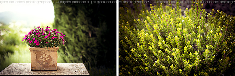 photographs-wedding-destination-umbria